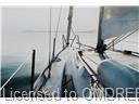 Listing O4919540 - Large Photo # 9