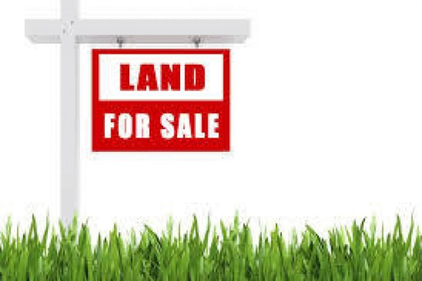 12669 County Rd 27 - Lot 7, Springwater