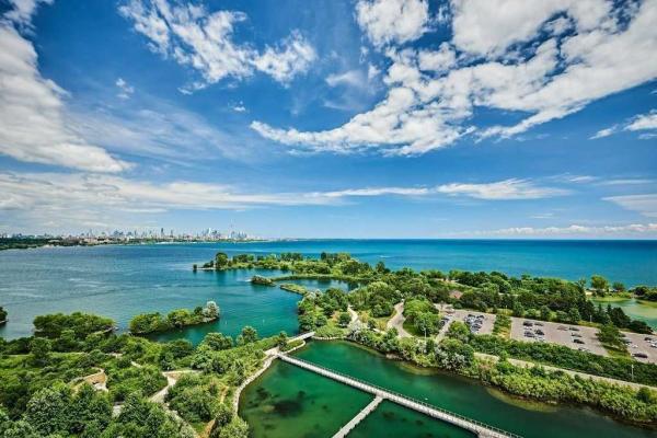 20 Shore Breeze Dr, Toronto