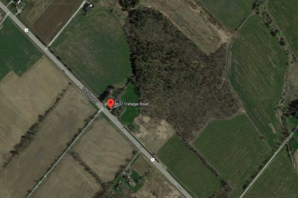 8637 Trafalgar Rd, Halton Hills
