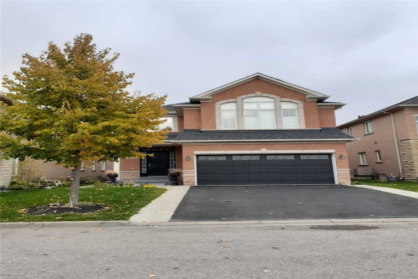 7 Customline Dr, Brampton