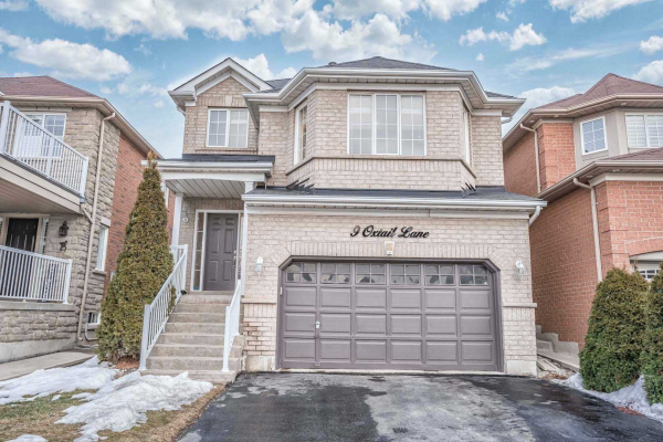 9 Oxtail Lane, Brampton