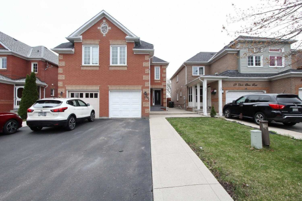 161 Clover Bloom Rd S, Brampton