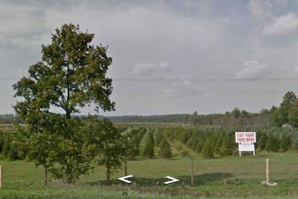 635548 Highway 10 Rd, Mono