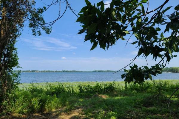 189 Washburn Island Rd, Kawartha Lakes