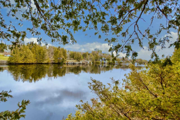157 Juniper St, Kawartha Lakes