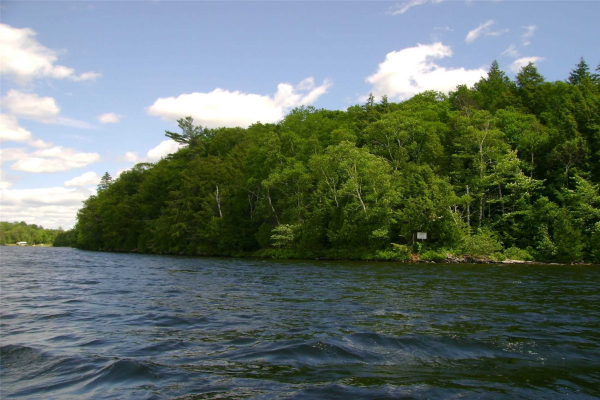 0 Little Long Lake Rd, Parry Sound Remote Area
