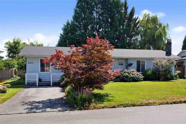 22914 STOREY AVENUE, Maple Ridge